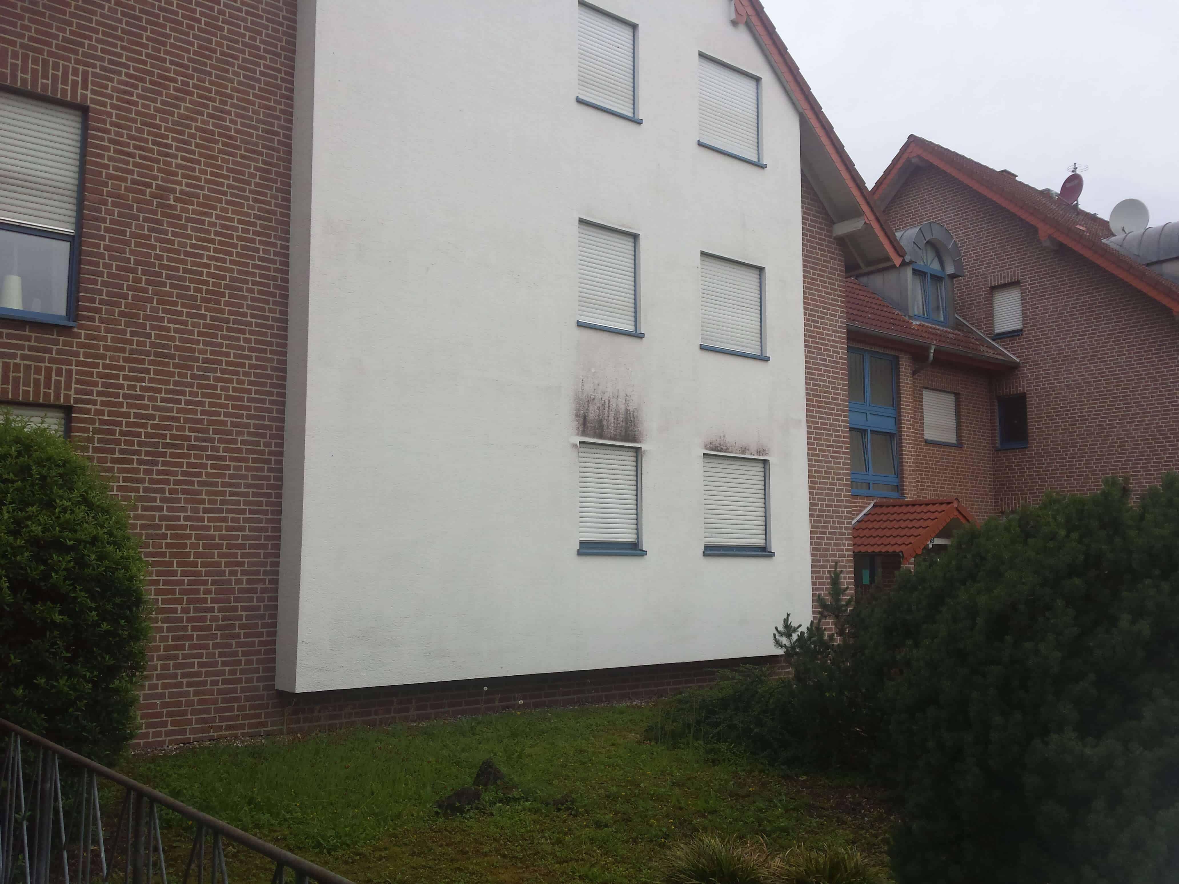 Schwarzalgen sind oft über dem Fenster können aber leicht gereinigt werden.