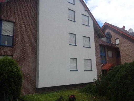 Gereinigte Hauswand in Dortmund nach der Algenentfernung