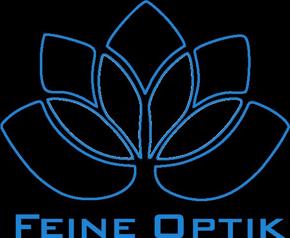 Fassadenreinigung Feine Optik